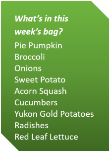 Week 1 Fall 2018_veg list.png