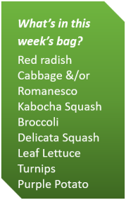 Week 3 Fall 2018_veg list.png